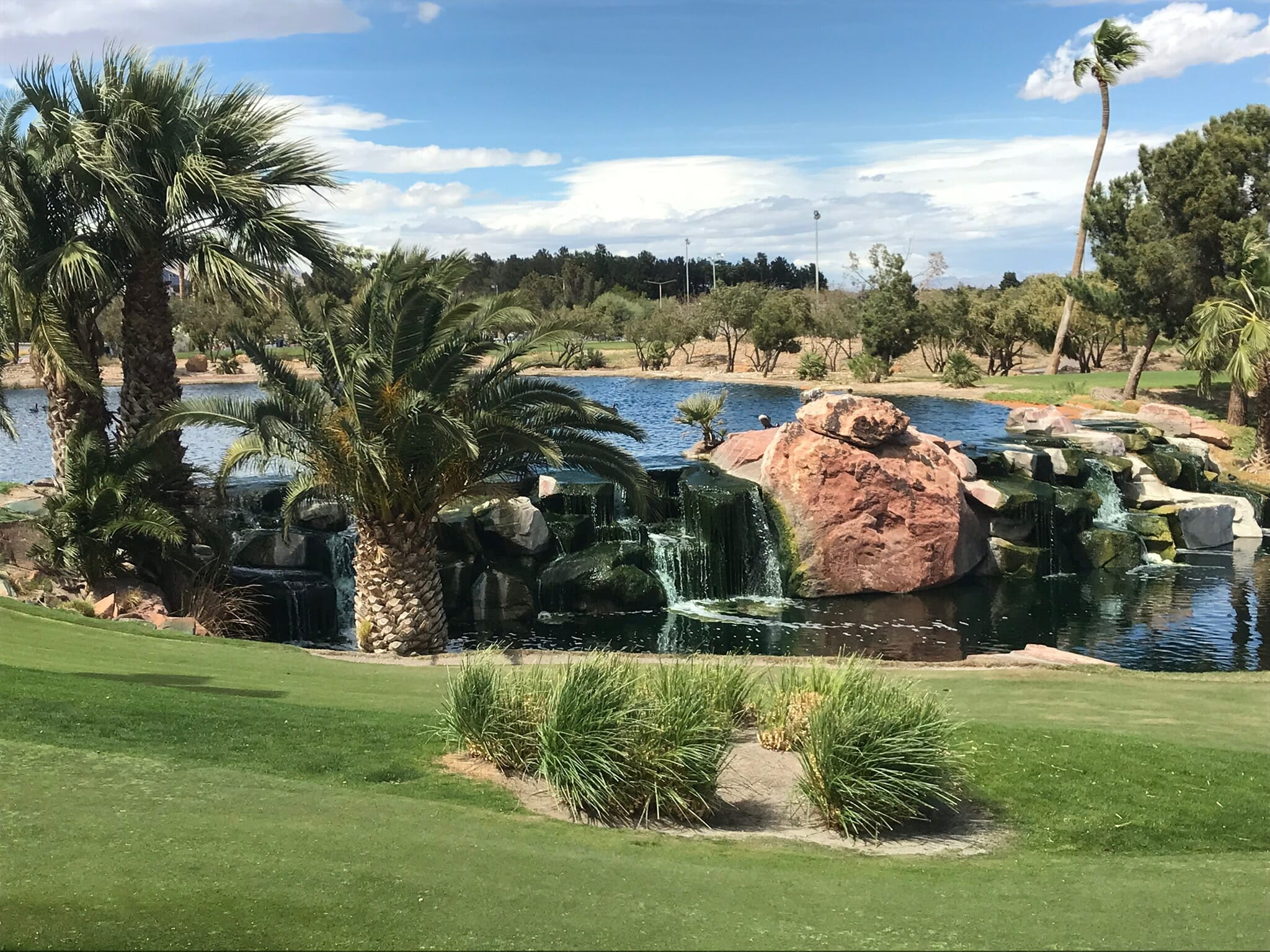 Las Vegas Pond